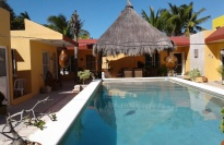 Pool To Palapa