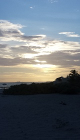 Sunrise 8.5.16